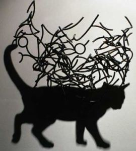 kc shadow cat